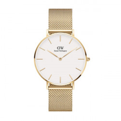 DANIEL WELLINGTON PETITE EVERGOLD 36 (WHITE)