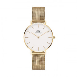 DANIEL WELLINGTON EVERGOLD 32 (WHITE)